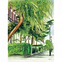 Canning Street - Trees